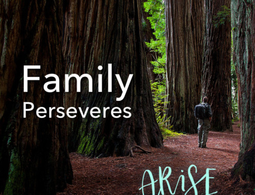Family Perseveres
